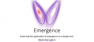 Emergence Theme Group – Week One